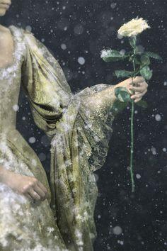 The Frozen Garden by David et Myrtille
