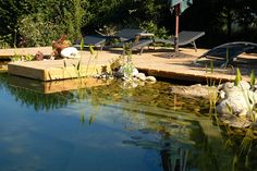How to Build a Natural Swimming Pool | MOTHER EARTH NEWS Natural Swimming Ponds, Natural Pond, Swimming Pools, Outdoor Fun, Outdoor Decor, Pool Sizes, Mother Earth News, Amazing Decor, Pool Cleaning