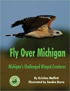 Fly Over Michigan: Michigan's Challenged Winged Creatures Green School, Michigan, Wings, Creatures, Challenges, Amazon, Books, Animals, Amazons