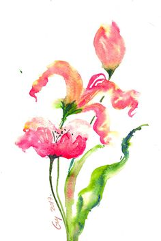 Wildflowers on white background Original watercolor painting