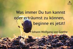 Was immer Du tun kannst oder erträumst zu können,  beginne es jetzt! Johann Wolfgang von #Goethe #Dankebitte #Sprüche #Gedanken #Weisheiten #Zitate
