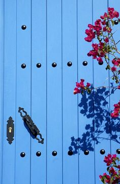 Another shade of blue would love on our front door.