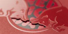 Red Bull – Schuber Red Bull steht nicht nur für das weltberühmte Energy-Getränk, sondern auch für aussergewöhnliche und exklusive Anlässe aller Art. Für die Einladung an diese Events verfügte das Unternehmen lange Zeit über kein geschlossenes Konzept, was von neuzeichen geändert wurde... Flyer, Layout, Gestaltung, Typografie Flyer Layout, Communication Design, Red Bull, Events, Books, Business, Communication, Typography, Concept