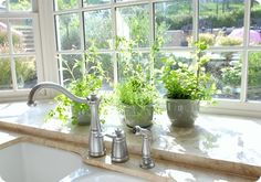 love the large space behind the sink and the overflowing herbs!