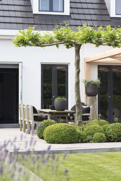 58 Ideas For Backyard Garden Design Layout Shape Stone Patios 58 Ideas For Bac& Back Gardens, Small Gardens, Outdoor Gardens, Roof Gardens, Grey Gardens, Dream Garden, Home And Garden, Garden Living, Garden Wallpaper