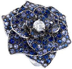 #PiagetRose #ring in 18K white gold, set with one brilliant-cut #diamond and brilliant-cut #sapphires.
