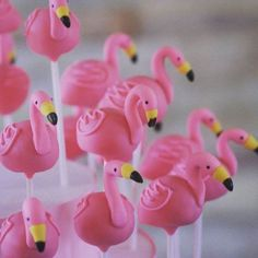 Flamingo fun! Flamingo cake pops #creativecakepops #cakepop #cakepop #flamingos