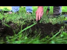 The Soil Health Card Tests - YouTube