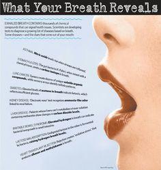 WSJ - What Your Breath Reveals  Each Patient Has a Unique Breath   Fingerprint  That Doctors Could Use to Diagnose 0d9d368c94ce