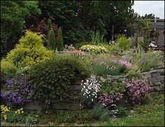 One of the beautiful flower gardens around Ithaca