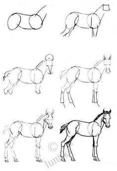 drawing horses step by step ~ drawing horses ; drawing horses step by step ; drawing horses step by step tutorials ; Horse Drawings, Pencil Art Drawings, Cool Art Drawings, Art Drawings Sketches, Easy Drawings, Animal Drawings, Drawing Skills, Drawing Techniques, Arte Equina