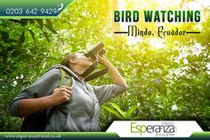 Bird watching, Mindo, Ecuador:  |    #Mindo is a #mountainous #watershed situated in the #western #slopes of the #Andes, where two of the most #biologically diverse #ecoregions in the #world meet: the #Chocoan #lowlands and the #Tropical #Andes.  |    Source: https://en.wikipedia.org/wiki/Mindo,_Ecuador  |    #BirdWatching #Flights #Travel #SouthAmerica #FlightstoMindo #FlightstoEcuador  |    South America #TravelExperts: http://www.esperanzatravel.co.uk/cheap-flights-to-ecuador.php