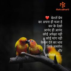 Hindi Quotes Images, Sufi Quotes, Marathi Quotes, Love Quotes With Images, Motivational Quotes In Hindi, New Quotes, Daily Quotes, Inspirational Quotes, Urdu Quotes