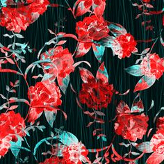 Seamless Cycle of Beautiful Red Flowers