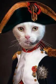 Purrsday Poetry: The Empurror Rules: A Catatonia Poem - Katzenworld Cats And Kittens, Cats 101, Cat Art, Pet Portraits, Funny Cats, Fantasy Art, Dog Cat, Whippet, Pantries