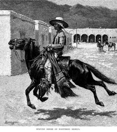 Spanish Horse of Northern Mexico, drawing by Frederic Remington