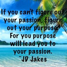 Have you found your passion?