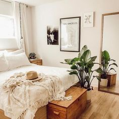 neutral bedroom, plant, wooden chest