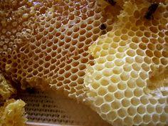 honeycomb the good stuff!