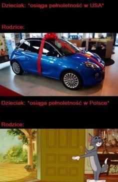 Very Funny Memes, Great Memes, Wtf Funny, Hilarious, Funny Picture Quotes, Funny Pictures, Funny Lyrics, Polish Memes, Komodo Dragon