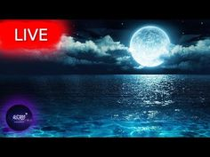 🔴 Sleep Music, Sleep Meditation, Healing Music, Calm Music, Relaxing Music, Study Music, SleepWelcome everyone! I hope your are having an amazing Day/Night! Get back loosen up your body take a deep breath and enjoy my music with the beautiful imagery from all around the world!   All music composed by Astro Universe - Relaxing Music  My relax music can be used as calm music or soothing music for stress relief  as sleep music to relax after a hard day's work  as study music or as healing… Yoga Music, Meditation Music, My Music, Take A Deep Breath, Music Composers, Music Heals, Relaxing Music, I Hope You, Stress Relief