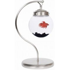 Hanging Fishbowl idea don't know about a fish but interesting for display