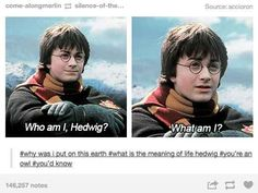 "When they figured out that maybe he was a bit dumb as well. | 26 Times Tumblr Had Serious Questions About ""Harry Potter"""