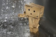 Danbo's Adventures
