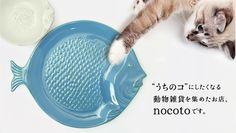 魚皿_new