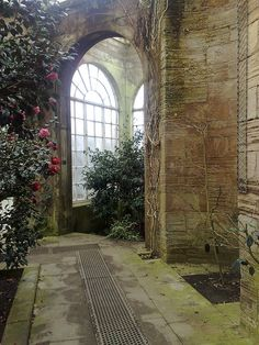 Camellia House Bretton Hall West Bretton Wakefield Yorkshire (Great Britain) by woodytyke