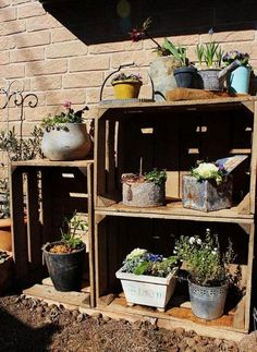 Balcony ideas - staged shelving for container gardens and planters.