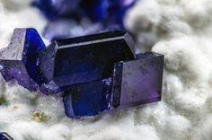 Henmilite, Olshanskyite - Fuka mine, Fuka, Bicchu-cho, Takahashi City, Okayama Prefecture, Chugoku Region, Honshu Island, Japan FOV : 3 mm