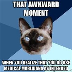 Chronic Illness Cat - That awkward moment  When you realize that you do use Medical Marijuana as intended