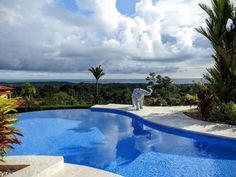 vacation rentals to book online direct from owner in . Vacation rentals available for short and long term stay on Vrbo. Beautiful Villas, Beautiful Places, Costa Rica, Luxury Villa, Horseback Riding, Ideal Home, Swimming Pools, Surfing, National Parks