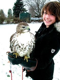 Falconry is good for the soul!