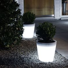 Get your glow on with BOXHILL's Illuminated LED Cone Planter! So sleek and modern, you'll love the way this planter lights up your space. We love lining these planters along a driveway for big, visual impact! View all of our unique lighting options at www.shopboxhill.com