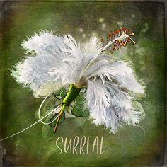Surrealism, Digital Scrapbooking, Layouts, Easter, Spring, Creative, Shop, Flowers, Design