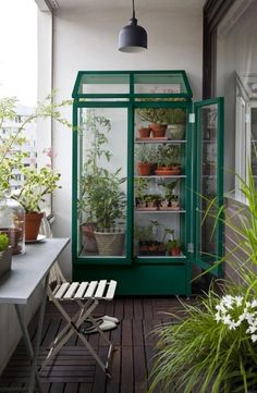 ベランダに温室を作ってガーデニングを楽しむ様子です。