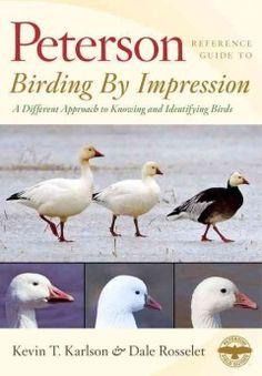 Birding By Impression A Different Approach To Knowing And Identifying Birds Kevin T