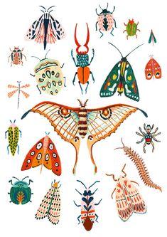 Tiny Moths All Over House . Tiny Moths All Over House . Beetle Moth and butterfly Print Insect Print Nursery Wall Animals Tattoo, Illustration Art, Illustrations, Bug Art, Insect Art, Art Mural, Animal Nursery, Grafik Design, Nursery Wall Art