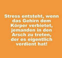 Stress entsteht, wenn das Gehirn dem Körper verbietet, jemandem in den Arsch zu treten, der es verdient hat!