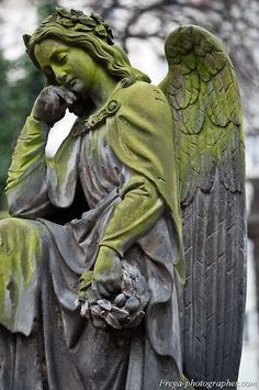 Find Sculpture Angel Prague Cemetery stock images in HD and millions of other royalty-free stock photos, illustrations and vectors in the Shutterstock collection. Cemetery Angels, Cemetery Statues, Cemetery Art, Angels Among Us, Angels And Demons, Statue Ange, Sculpture Art, Sculptures, Memes Arte