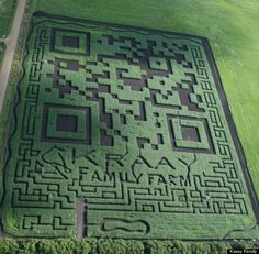 """QR code corn maze. Best comment so far: """"I wonder if the corn will start popping when Martians try scanning it from space with their laser-death beams"""" (@solitare_pax)."""