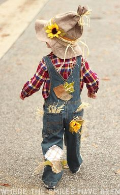 20 Easy DIY Halloween Costumes - Scarecrow kid 20 Easy DIY Halloween Costumes for Kids that will make parents pocket books smile. Step by Step instructions for DIY Halloween Costumes for Kids. Toddler Scarecrow Costume, Halloween Costumes Scarecrow, Halloween Look, Halloween Costume Contest, Toddler Costumes, Scarecrow Hat, Tutu Costumes, Halloween Costumes For Toddlers, Zombie Costumes