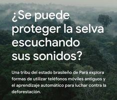 Historias de Google. Una tribu brasileña que lucha contra la deforestación.