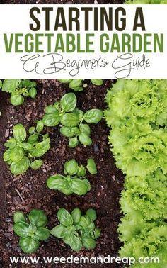 Starting a Vegetable Garden - Weed 'em & Reap | gardening | vegetables | healthy | local | garden