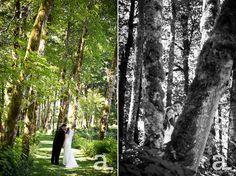 Bridal-Veil-Lakes-Wedding-Photography_0043.jpg
