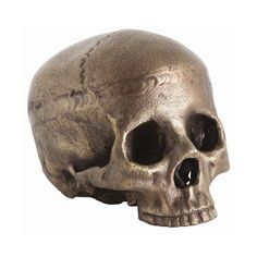 Arteriors Casper Aluminum Skull Brown By (220 CAD) ❤ liked on Polyvore featuring home, home decor, skull, decor, arteriors, skull home accessories, brown home decor, skull home decor and antique home decor