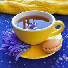 """«A woman is like a tea bag - you can't tell how strong she is until you put her in hot water. """" Eleanor Roosevelt 💜💛💜💛 #9vaga_coffee9…"""