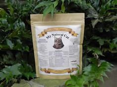 ... IBD (Irritable Bowel Disease) on Pinterest | Cat Food, For Cats and